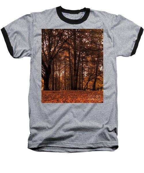 Autumn In Colligan Wood Baseball T-Shirt