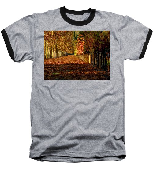Baseball T-Shirt featuring the pyrography Autumn In Napa Valley by Bill Gallagher