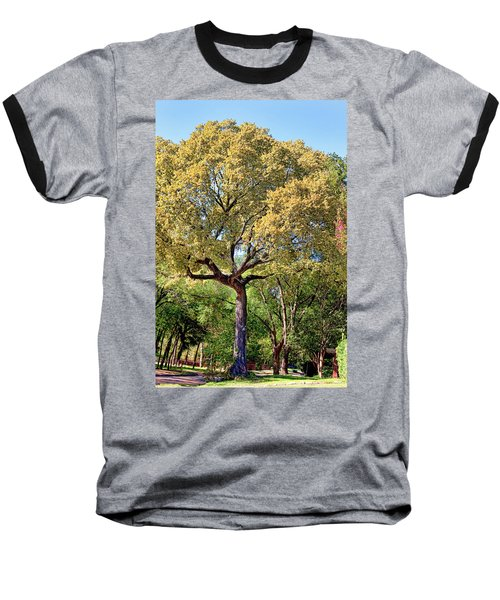 Autumn In Summer Baseball T-Shirt by Joan Bertucci