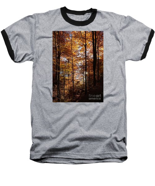 Autumn In The Alps 4 Baseball T-Shirt by Rudi Prott