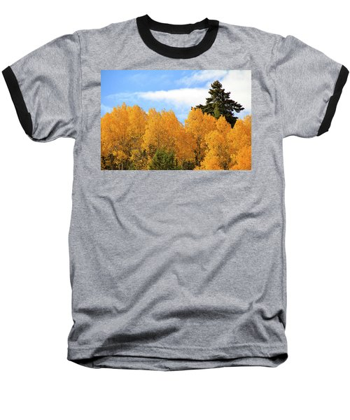 Autumn In The Owyhee Mountains Baseball T-Shirt