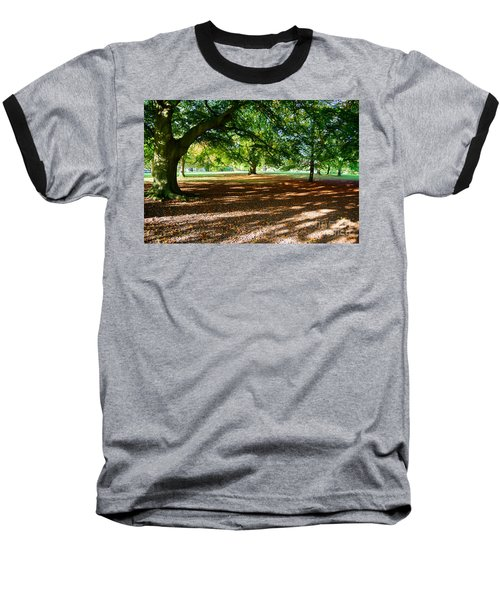 Autumn In The Park Baseball T-Shirt by Colin Rayner