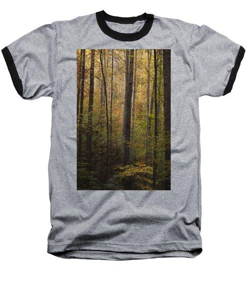 Autumn In The Woods Baseball T-Shirt
