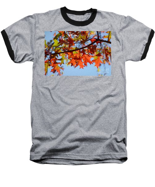 Autumn Leaves 16 Baseball T-Shirt by Jean Bernard Roussilhe