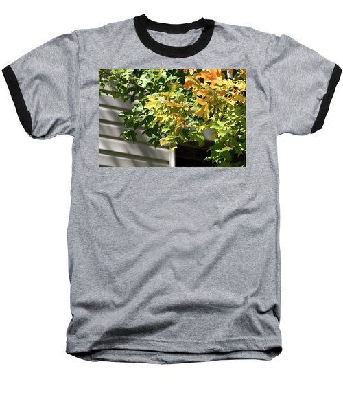 Autumn Leaves Against White Baseball T-Shirt