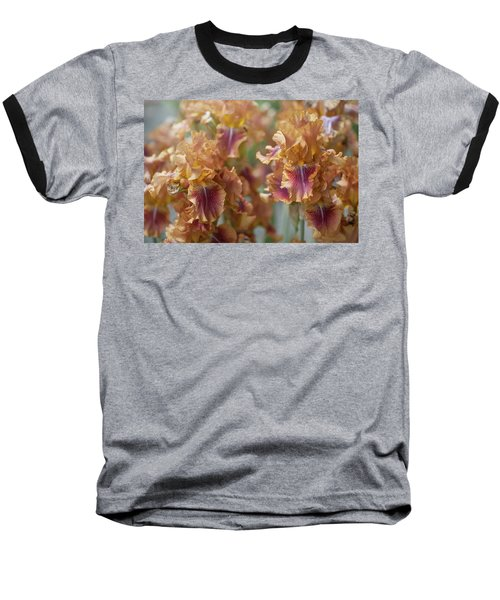 Autumn Leaves Irises In Garden Baseball T-Shirt
