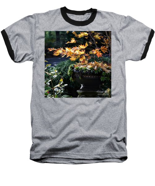 Autumn Maple And Succulents Baseball T-Shirt by Tanya Searcy
