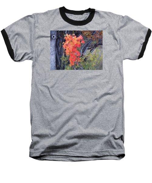 Autumn Oak Leaves Baseball T-Shirt by Deborah Moen
