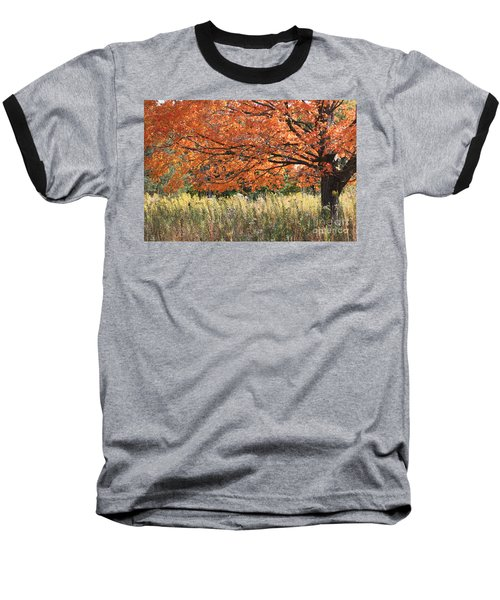 Baseball T-Shirt featuring the photograph Autumn Red   by Paula Guttilla