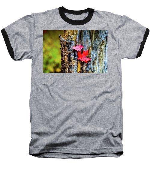 Autumn Silence Baseball T-Shirt
