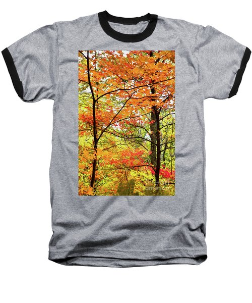 Baseball T-Shirt featuring the painting Autumn Splendor Fall Colors Leaves And Trees Ap by Dan Carmichael