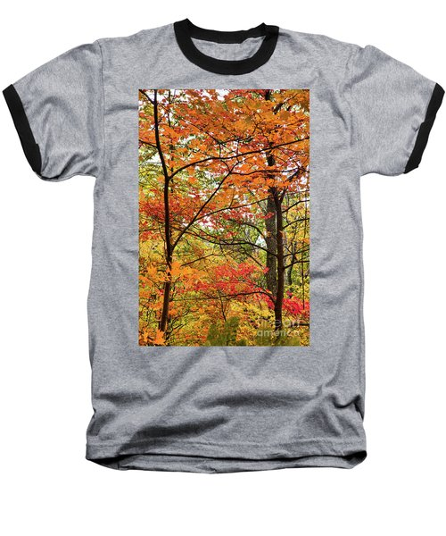 Baseball T-Shirt featuring the photograph Autumn Splendor Fall Colors Leaves And Trees by Dan Carmichael