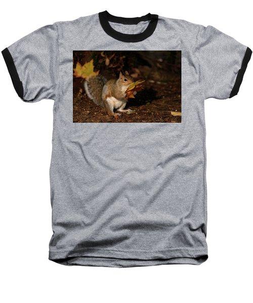 Autumn Squirrel Baseball T-Shirt by Matt Malloy