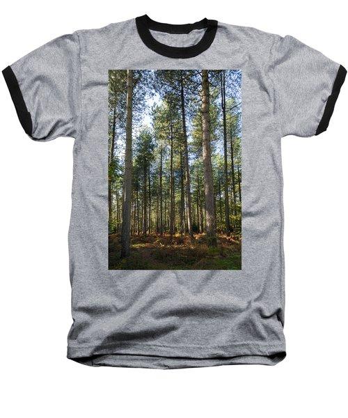 Autumn Tranquil Forest Baseball T-Shirt