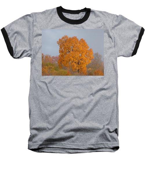 Autumn Tree Baseball T-Shirt by Donald C Morgan