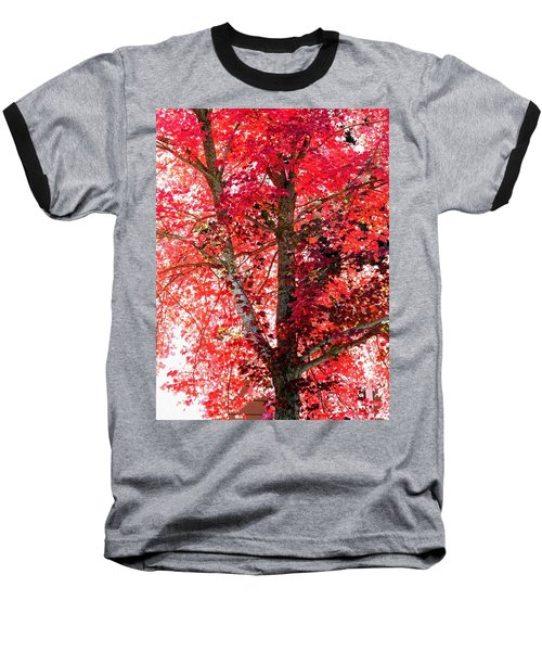 Autumn Tree Baseball T-Shirt by Michael Dohnalek