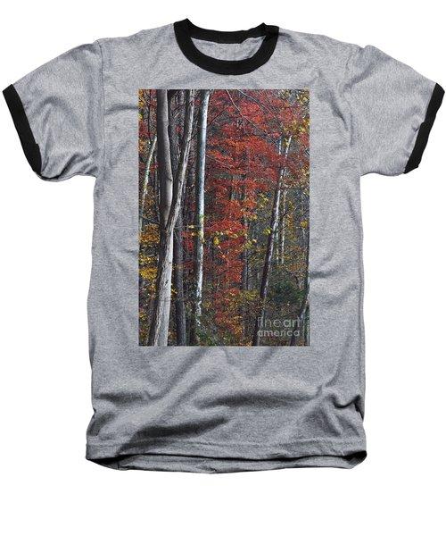 Autumn Trees 8261c Baseball T-Shirt
