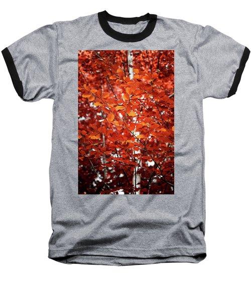 Autumn Triumph Baseball T-Shirt