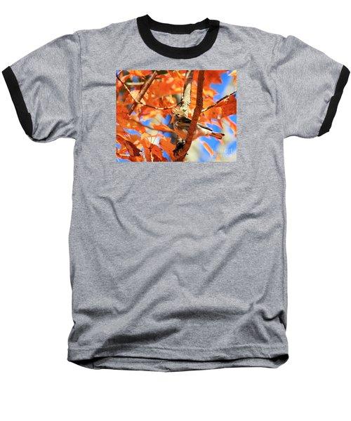 Autumn Warbler Baseball T-Shirt