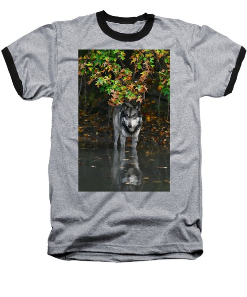 Autumn Wolf Baseball T-Shirt by Shari Jardina