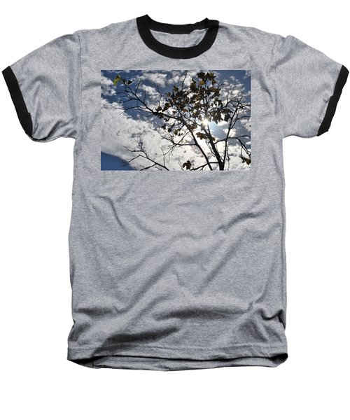 Autumn Yellow Back-lit Tree Branch Baseball T-Shirt