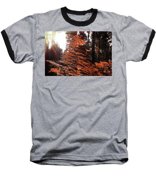 Autumnal Evening Baseball T-Shirt