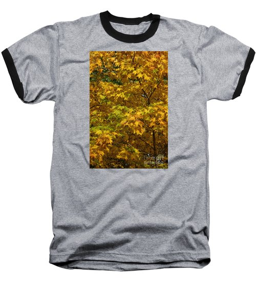 Autumnal Leaves And Trees 2 Baseball T-Shirt
