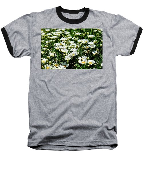 Baseball T-Shirt featuring the photograph Avalanche Sun Daises by Monte Stevens
