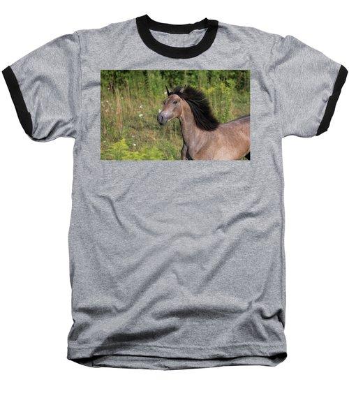 Avante Baseball T-Shirt