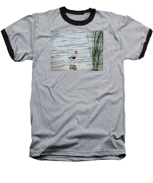 Avocet  Baseball T-Shirt