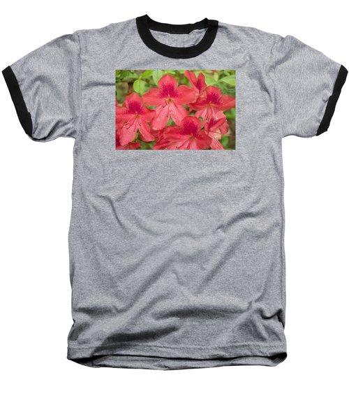 Azalea Blossoms Baseball T-Shirt