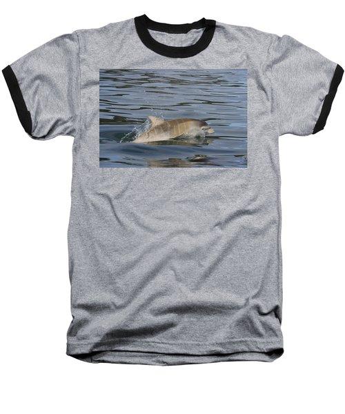Baby Bottlenose Dolphin - Scotland  #35 Baseball T-Shirt
