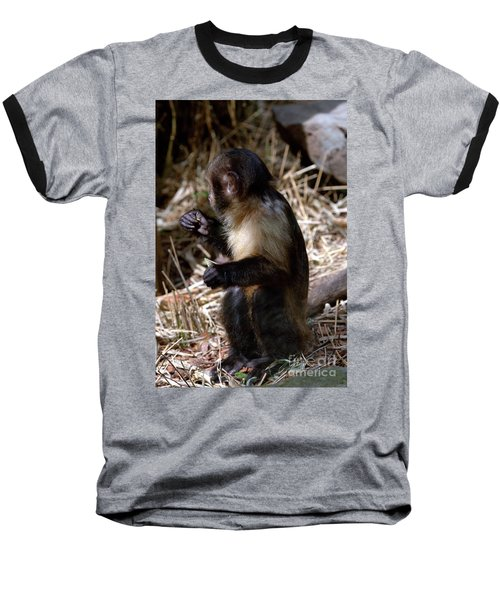 Baby Brown Capuchin Monkey Baseball T-Shirt by Baggieoldboy