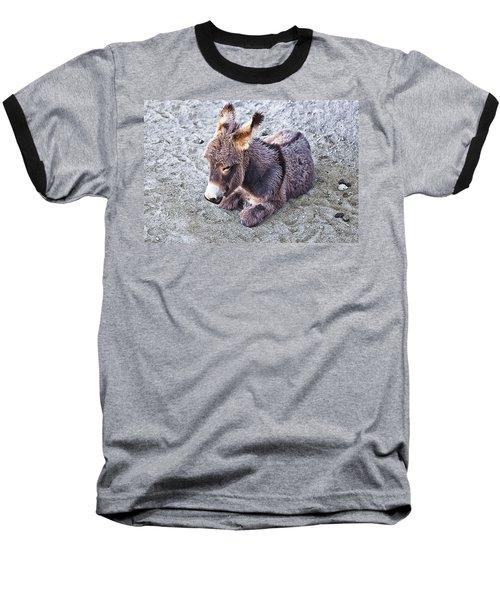Baby Burro Baseball T-Shirt