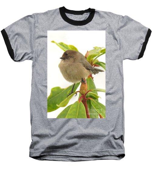 Baby Bushtit Baseball T-Shirt