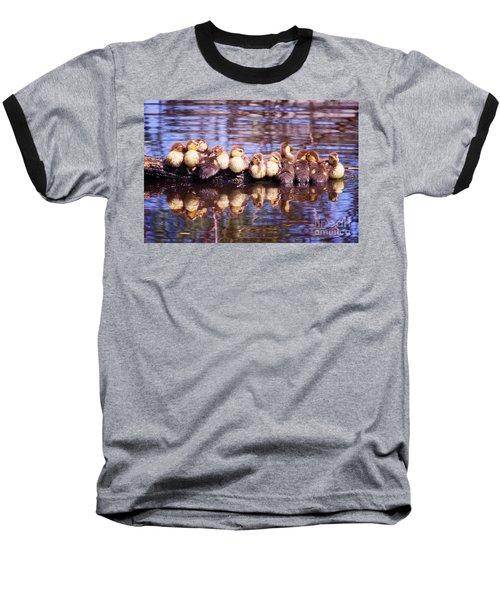 Baby Ducks On A Log Baseball T-Shirt by Stephanie Hayes