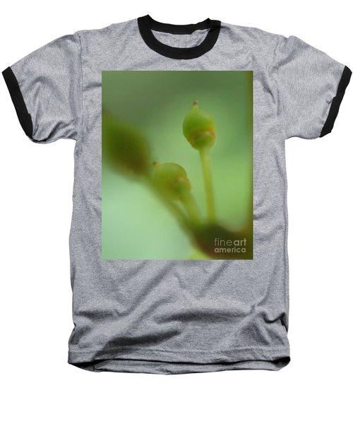 Baby Grapes Baseball T-Shirt by Christina Verdgeline
