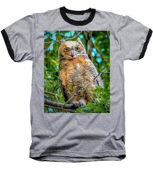 Baby Great Horned Owl Baseball T-Shirt