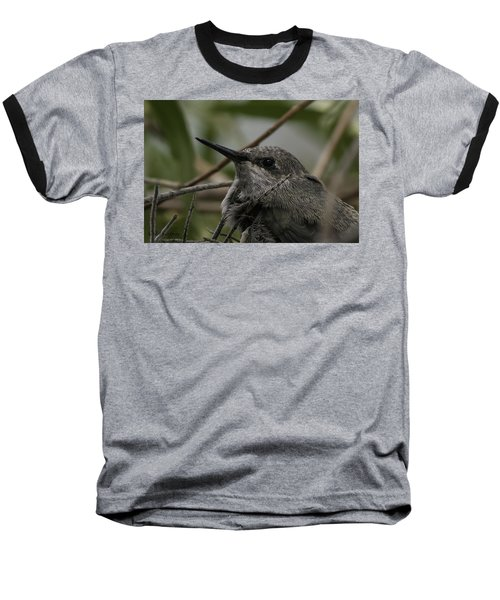 Baseball T-Shirt featuring the photograph Baby Humming Bird by Lynn Geoffroy