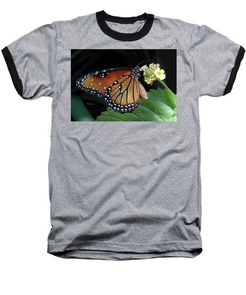 Baby Monarch Macro Baseball T-Shirt by Felipe Adan Lerma