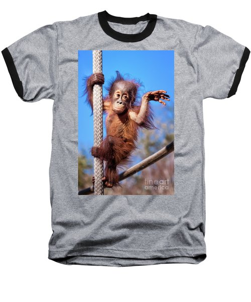 Baby Orangutan Climbing Baseball T-Shirt by Stephanie Hayes