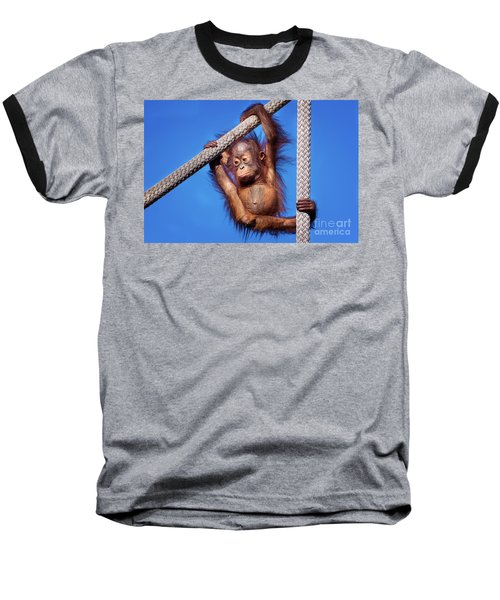 Baby Orangutan Hanging Out Baseball T-Shirt by Stephanie Hayes