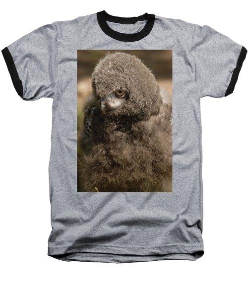 Baby Snowy Owl Baseball T-Shirt