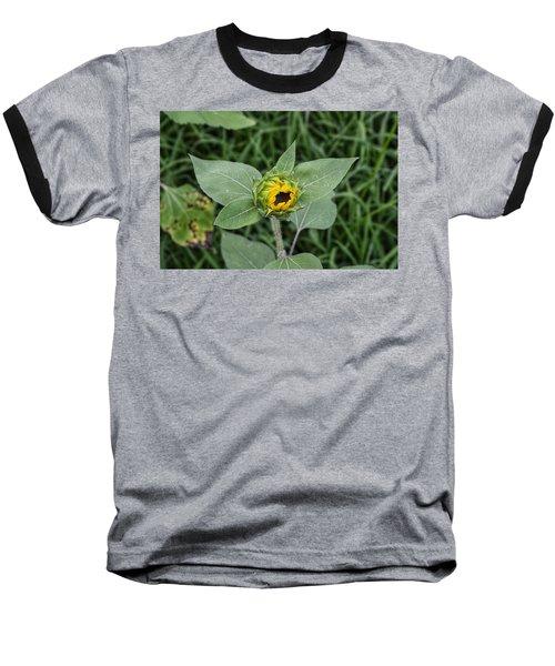 Baby Sunflower  Baseball T-Shirt