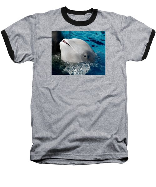 Baby Whale Baseball T-Shirt by Bob Pardue