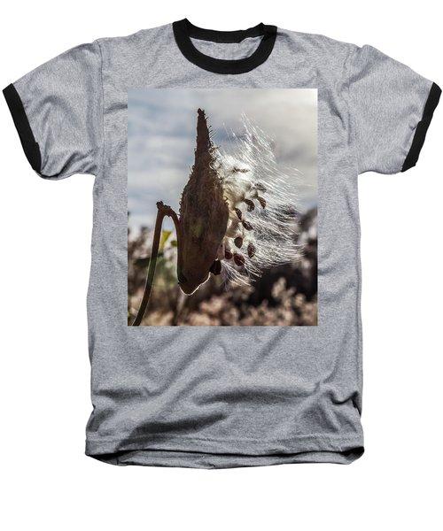 Back Lit Milkweed Pod Baseball T-Shirt