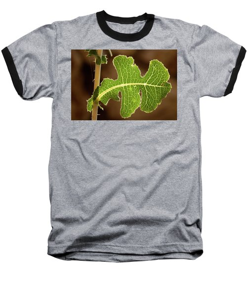 Baseball T-Shirt featuring the photograph Back Side Light On A Leaf At Sunset by Yoel Koskas