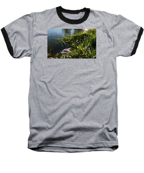 Backlight Plants By The Water  Baseball T-Shirt by Lyle Crump