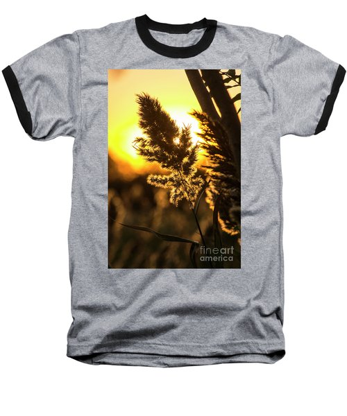 Baseball T-Shirt featuring the photograph Backlit By The Sunset by Zawhaus Photography