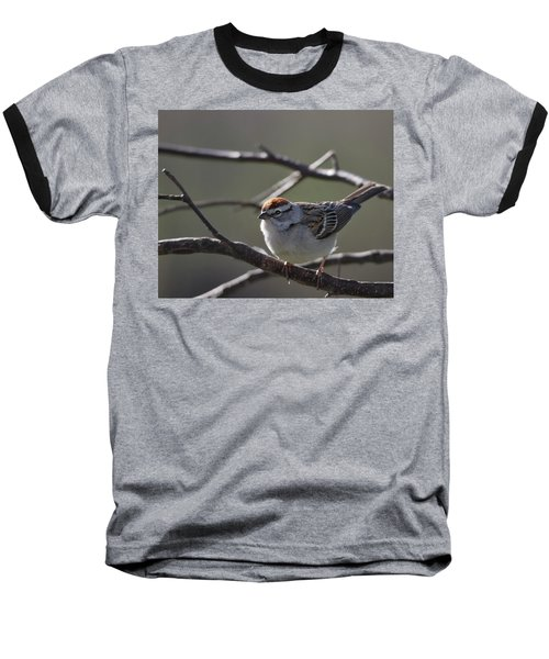 Baseball T-Shirt featuring the photograph Backlit Chipping Sparrow by Susan Capuano
